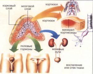 Феохромоцитома мкб 10