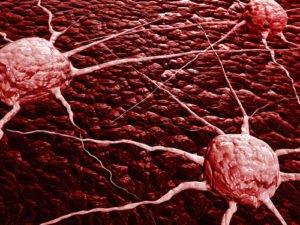 Что провоцирует раковые заболевания