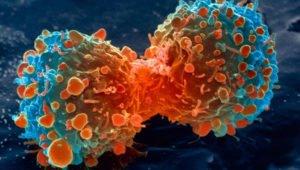 Лечение колоректального рака таргетная терапия