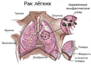 Р.  <!-- Yandex.RTB R-A-390263-2 --> <div id=