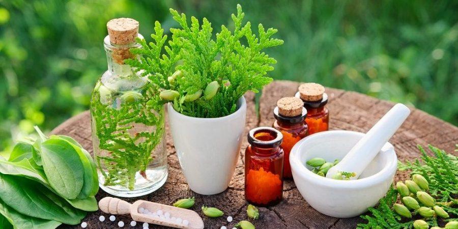 Лечение онкологии народными средствами