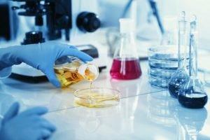 Бактерий запрограммировали на борьбу с раком